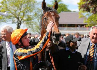 Telecaster out to thwart O'Brien's seventh Derby winning attempt