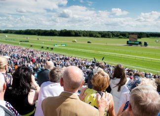 26,941-1 nine horse winning fromthehorsesmouth.tips accumalator