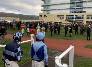 Bristol eyes Cheltenham Gold Cup ahead of Aintree Grand National