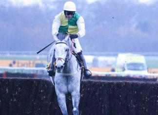 Vintage Clouds - 2020 Grand National bid.