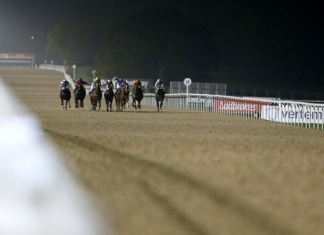 All-Weather at Newcastle on Saturday night