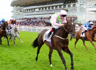 Galway summer festival cancelled due to coronavirus