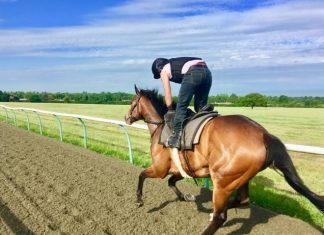 Trainer John Berry on course with Hopels High