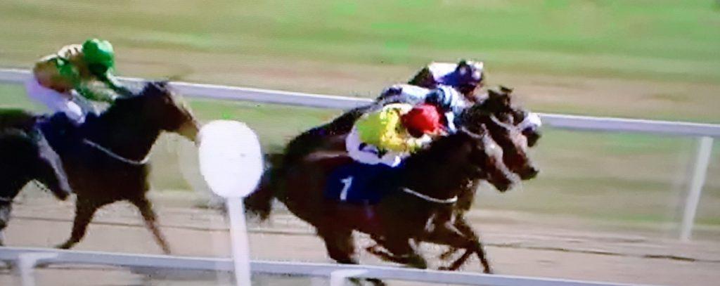 Queen Of Kalahari (red cap) driving win under jockey Lewis Edmunds: 10-1 tip completed 70-1 double.