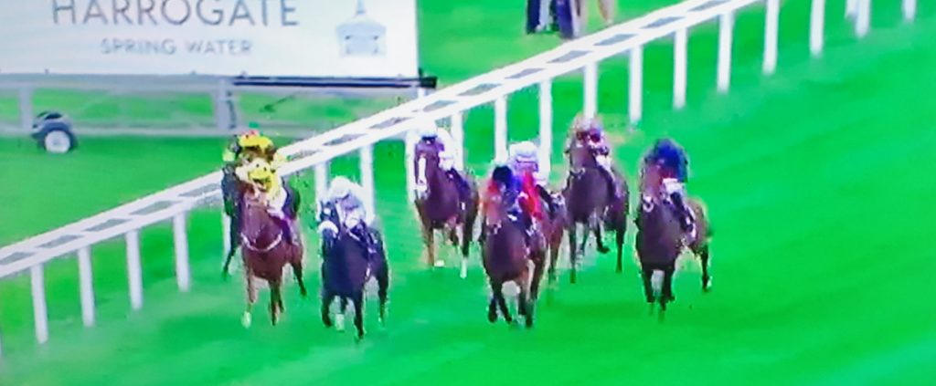 Queen-owned First Receiver (maroon) thwarted by Russian Emperor in Hampton Court Stakes.