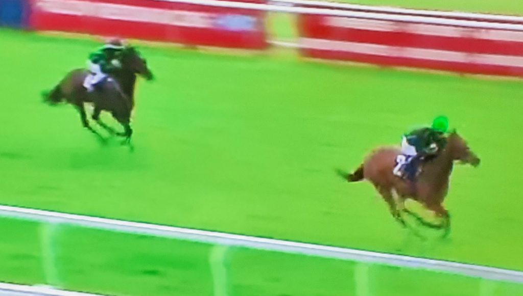 Bal Mal winning tip at Redcar.
