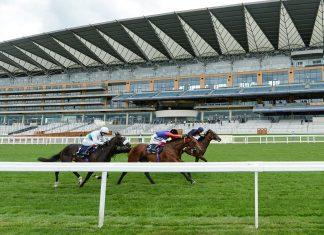 Hampton Court Stakes