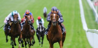 Serpentine, ridden by Emmet McNamara, gained a five and a half lengths win