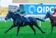 King Of Change: Ascot Champions Day QEII or Champion Stakes entry?.