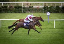 300-1 shock He Knows No Fear record win at Leopardstown