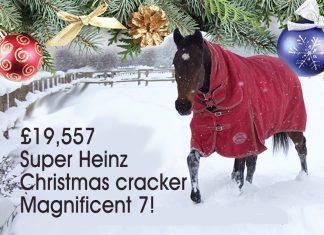 £19,557 Super HeinzChristmas cracker Magnificent 7!