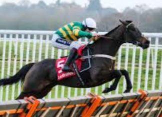 Epatante faces big test in Christmas Hurdle after Fighting Fifth Hurdle win.