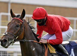 Thomas Greatrex rode Pink Jazz (13-2) to victory completing £10,907 Super Heinz.