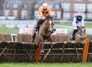 Metier wins the @UnibetRacing Tolworth Novices' Hurdle in style. Image courtest Sandown Racecourse