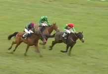 Nicholls trained Enrilo tipped by fromthehorsesmouth.info lands Betfair Novices Handicap Chase