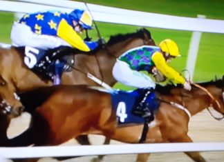 Harry's Ridge (4) gets up to beat Sambucca Spirit a neck in Betway Handicap at Newcastle.