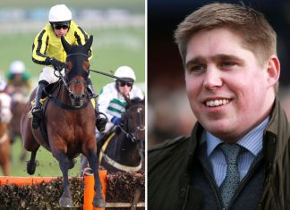 Dan Skelton: No worries about Allmankind's suitability for Cheltenham. Photo: Twitter
