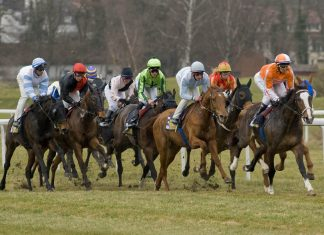 £3.124m fromthehorsesmouth.info 12-horse accumulator!