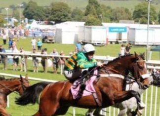 Richard McLernon rides Kimberlite Candy: We're all systems go.