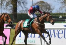 Mick Channon trained Storting ridden by Tony Hamilton won Cliff Stud Thirsk Hunt Cup.