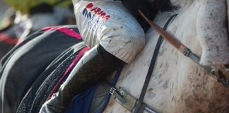 fromthehorsesmouth.info cleans up at Bath with 146-1 treble!