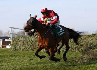 Tiger Roll out to prove fitness ahead of National