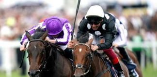 Jockey Frankie Dettori (right) celebrates winning the Investec Oaks on Anapurna