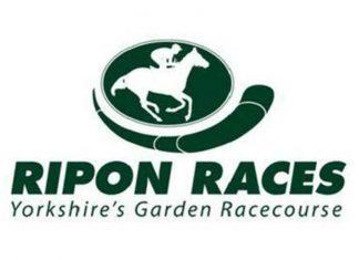 ripon horse racing