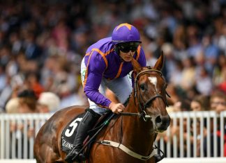 Tragic death of Wicklow Brave in American Grand National