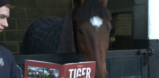Tiger Roll - 8-1 to win three consecutive Grand Nationals.