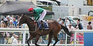 Alan Kirby tipped at Lingfield
