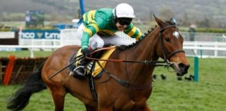 Defi Du Seuil Cheltenham Champion Chase against Altior looms