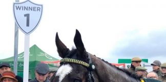 Little Bruce: North Yorkshire Grand National win at Catterick, under Tommy Dowson.