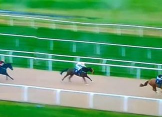 Ben Curtis romps home on Ice Pyramid at Newcastle to complete 7,835-1 Super Heinz.