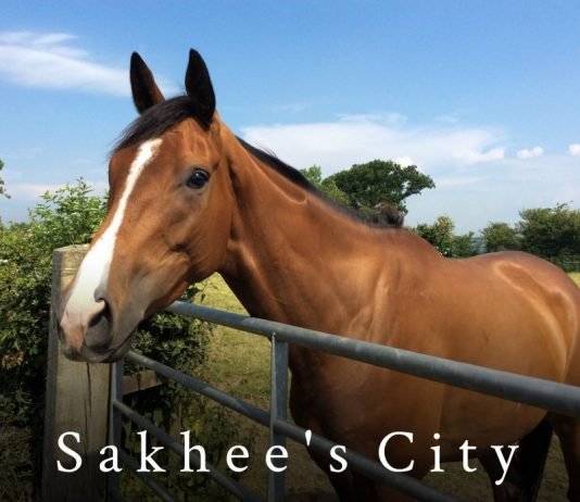 With career wins at Wetherby, Newcastle and Catterick, Sakhee's City, with Tommy Dowson up, is worthy of each way support.