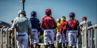 Newcastle sees plethora of entries on eight-race card meeting