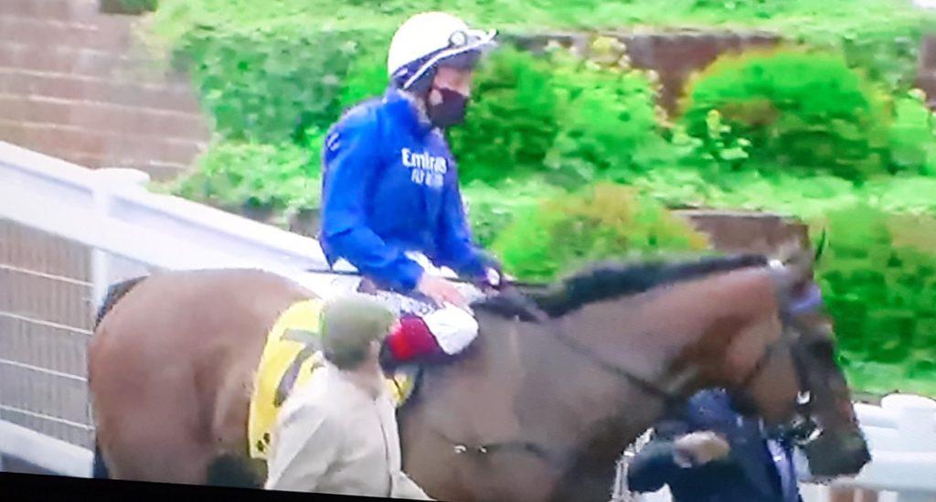 Daarik winning tip at Newcastle under Robert Havlin.