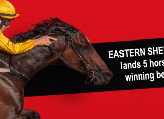Eastern Sheriff fires 1,067 Lucky 31 fromthehorsesmouth.info five horse winning bet