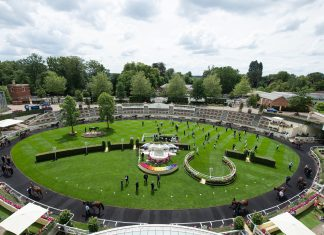 fromthehorsesmouth.info headline tip Battleground lands Chesham at Royal Ascot