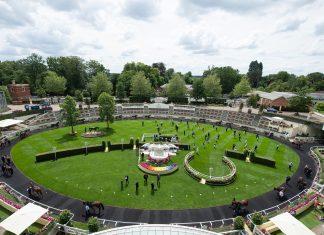 Royal Ascot £6m prizemoney back on track amid COVID-19