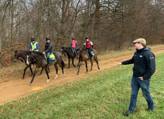 James Ferguson out on the gallops