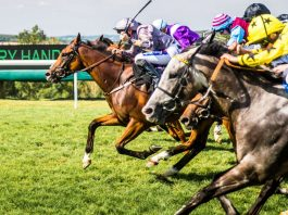 Qatar Goodwood Festival