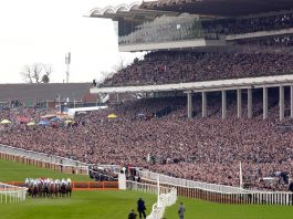 Finger pointed at Cheltenham by owners