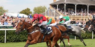 Oxted - Sprint Cup bid