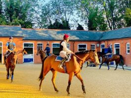 Namib Dancer will be very sorely missed after Huntingdon fatality