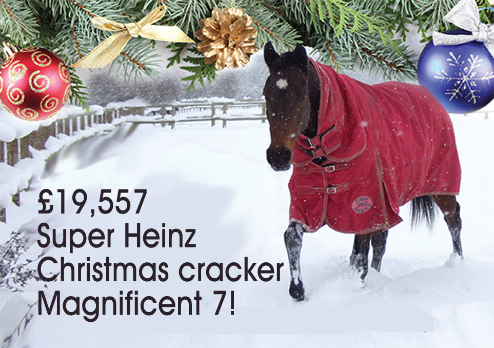 £19,557 Super Heinz Christmas cracker Magnificent 7!