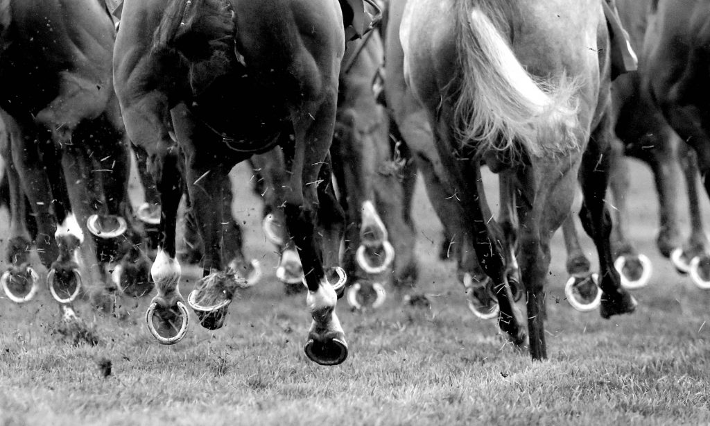 BHA announce owners new coronavirus guidelines