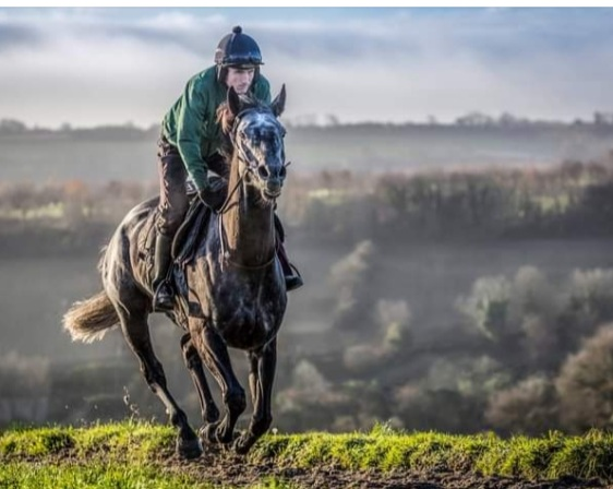 Al Dancer who beat Master Tommytucker in October go head-to-head at Cheltenham.