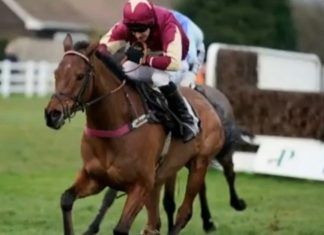 The Two Amigos: fromthehorsesmouth.info ew tip 2nd in Coral Welsh Grand National.