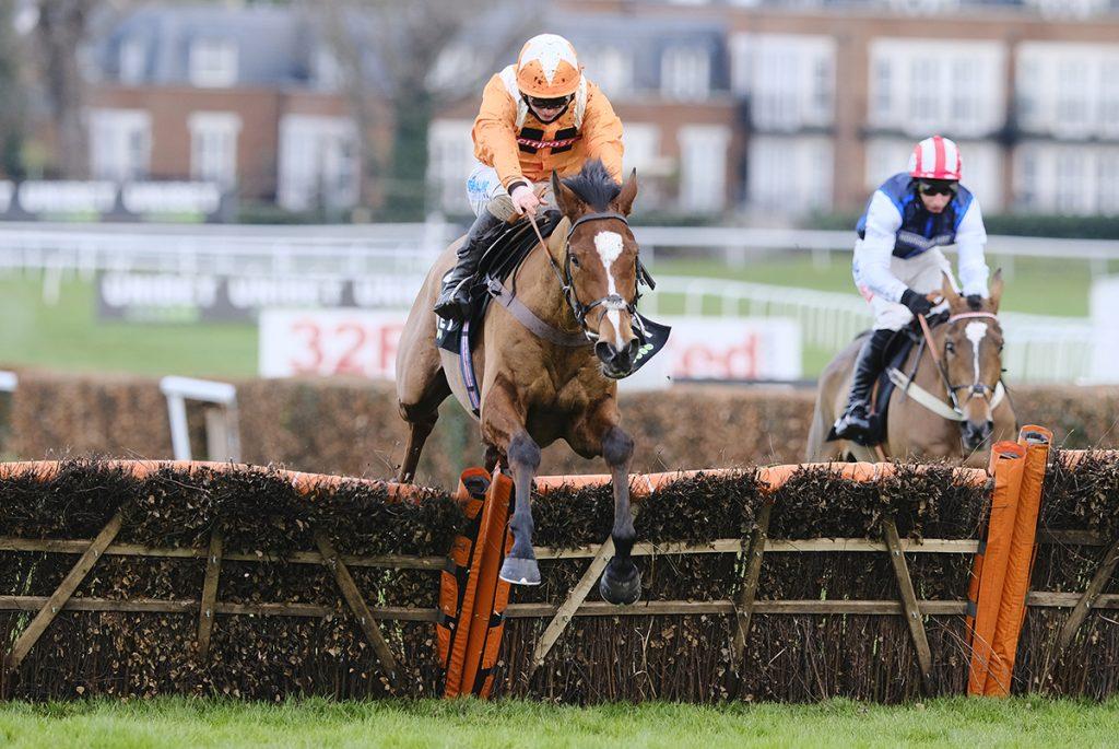 Metier wins the @UnibetRacing Tolworth Novices' Hurdle in style. Image courtest Sandown Racecourse
